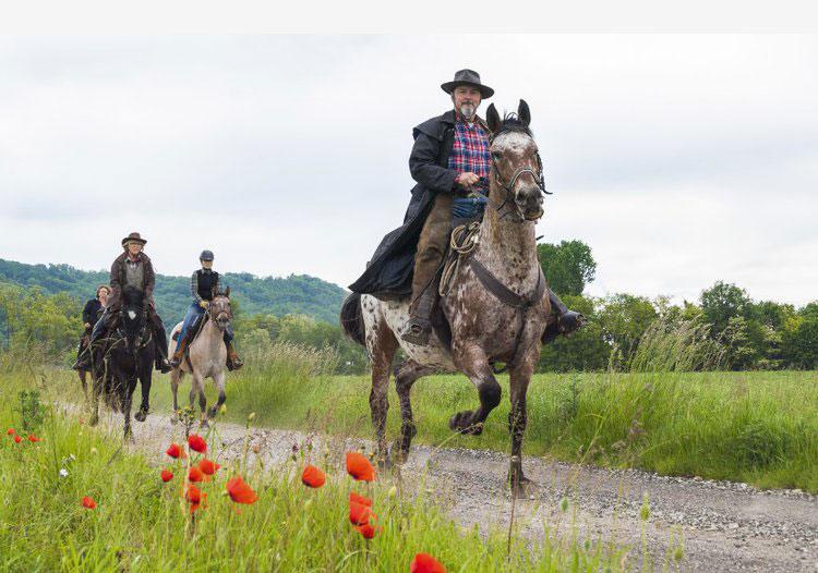 cheval-randonnee-equestre-isere-1
