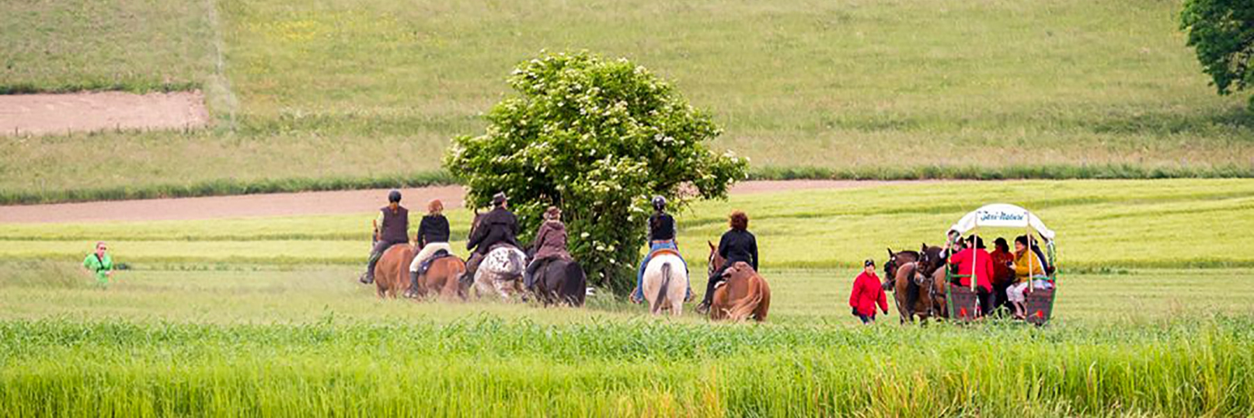randonnee-equestre-isere-vals-dauphine_1800x600_acf_cropped